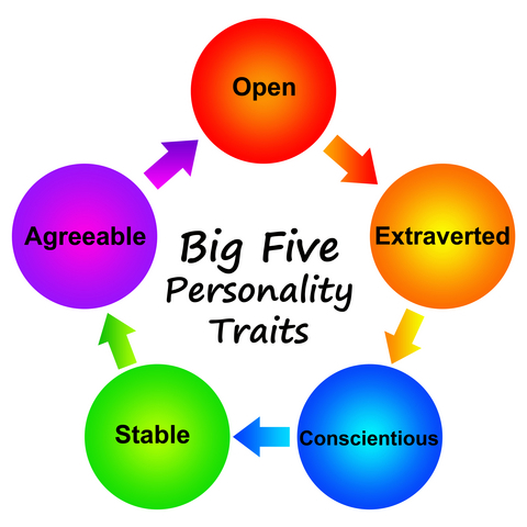 the big five personality traits the five factor model essay Use the big five personality traits model to learn more about your personality  and  from goldberg, lr, 'the development of markers for the big-five factor .