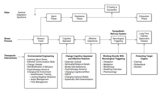 Stress Management Figure 1