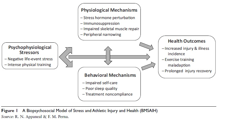 biopsychosocial-model-of-injury