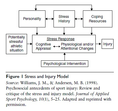 Psychological Susceptibility to Injury
